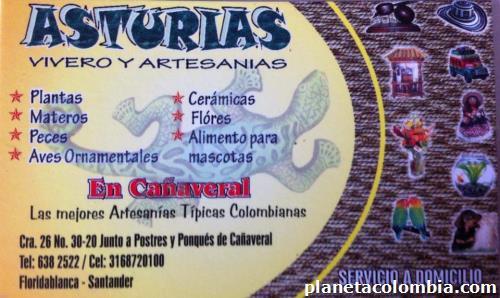Asturias vivero artesan as en floridablanca for Viveros en asturias