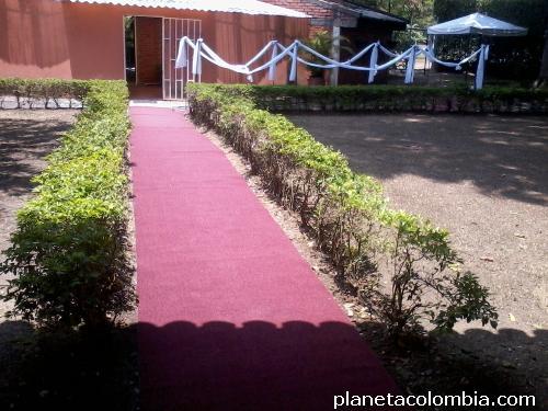 Fotos de a a alquiler de alfombras en cali eventos los - Alquiler alfombras ...