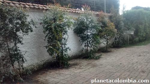 Fotos de servicios de jardiner a en usaqu n - Servicios de jardineria ...