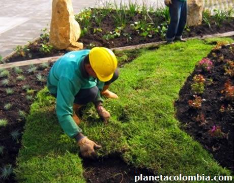 Servicio de limpieza para casas oficinas y chalets en armenia tel fono - Servicio de limpieza para casas ...